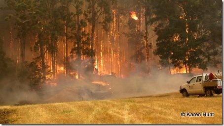 Fires Boolarra Jan2009 012